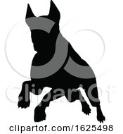 Silhouetted Dog