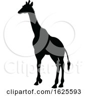 Giraffe Safari Animal Silhouette