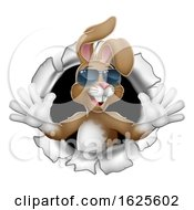 Poster, Art Print Of Easter Bunny Cool Rabbit Sunglasses Breaking Wall