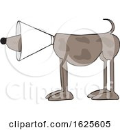 Poster, Art Print Of Cartoon Brown Dog Wearing A Cone