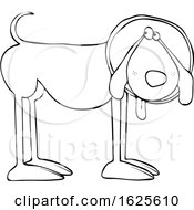 Poster, Art Print Of Cartoon Black And White Dog Wearing A Cone