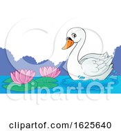 Swan Near Lotus Flowers