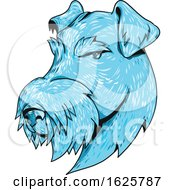 Bingley Terrier Head Drawing