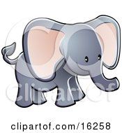Adorable Gray Elephant With Big Pink Ears And A Short Trunk Clipart Illustration