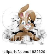 January 21st, 2019: Easter Bunny Thumbs Up Coming Out Of Background by AtStockIllustration