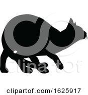 A Cat Silhouette