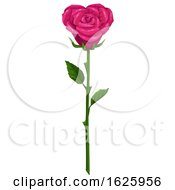 Poster, Art Print Of Valentines Day Rose