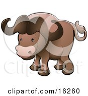 Cute Brown African Buffalo Syncerus Caffer Also Known As The Cape Buffalo Clipart Illustration
