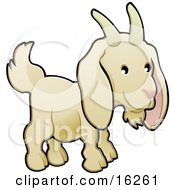 Adorable White Goat With Horns On His Head Clipart Illustration