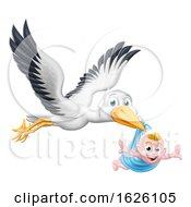 Stork Cartoon Pregnancy Myth Bird With New Baby