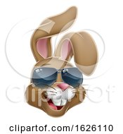 Poster, Art Print Of Cool Easter Bunny Rabbit In Shades Cartoon