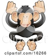Adorable Black And Tan Chimpanzee Monkey Being Friendly And Playful Clipart Illustration