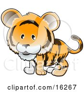 Adorable Orange Tiger With Black Stripes Clipart Illustration