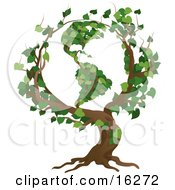 Tree With Branches Growing In The Shape Of The Earth With The Americas Featured Clipart Illustration