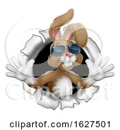 Poster, Art Print Of Easter Bunny Rabbit In Shades Breaking Background