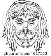 Homo Habilis Face Front Drawing