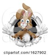 Easter Bunny Rabbit Breaking Through Background