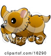 Baby Brown Saber Tooth Tiger With Big Teeth Clipart Illustration Image