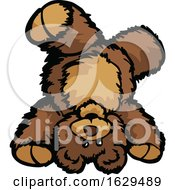 Teddy Bear Doing A Hand Stand by Chromaco
