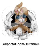 Poster, Art Print Of Easter Bunny Thumbs Up Cool Rabbit In Sunglasses