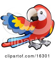 Red Yellow And Blue Scarlet Macaw Parrot Bird Ara Macao With A White Circle Around Its Eye Clipart Illustration Image by AtStockIllustration