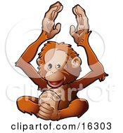 Happy Orangutan Monkey Clapping His Hands And Feet Clipart Illustration Image
