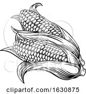 Sweet Corn Ear Maize Woodcut Etching Illustration