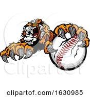 Vicious Tiger Mascot Grabbing A Baseball
