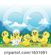 Poster, Art Print Of Yellow Chicks