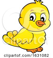 Poster, Art Print Of Yellow Chick