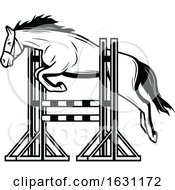 Black And White Horse Jumping