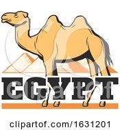 Camel And Egyptian Pyramids
