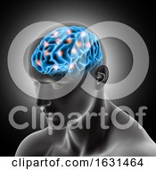 3D Male Medical Figure Showing Brain With Highlights