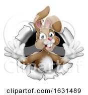 Poster, Art Print Of Easter Bunny Rabbit Breaking Background
