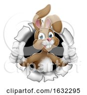 Poster, Art Print Of Easter Bunny Thumbs Up Rabbit Breaking Background