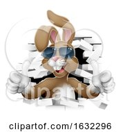Poster, Art Print Of Cool Easter Bunny Shades Thumbs Up Breaking Wall