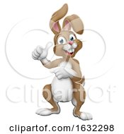 Poster, Art Print Of Easter Bunny Rabbit Cartoon Thumbs Up And Pointing