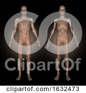 3D Medical Image Showing Male At Healthy And Unhealthy Weight
