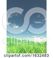 3D Grassy Landscape With Blue Sky