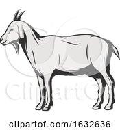 Retro Goat
