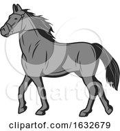 Poster, Art Print Of Gray Horse