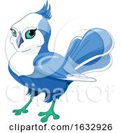 Cute Blue And White Bird