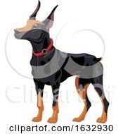 Doberman Pinscher Dog by Pushkin #COLLC1632930-0093