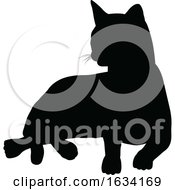 Silhouette Cat Pet Animal