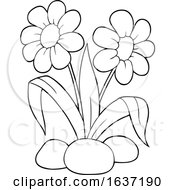 Poster, Art Print Of Black And White Spring Time Daisy Flowers