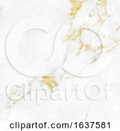 Marble Texture Background With Gold Highlights