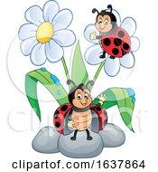 Ladybugs And Flowers