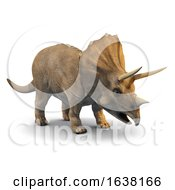 3d Triceratops On A White Background