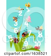 Bugs Insects Numbers Count Illustration