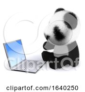 3d Baby Panda With Laptop by Steve Young
